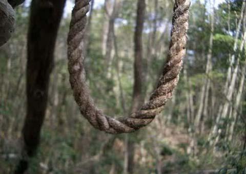 suicidioenforcamentozonarural