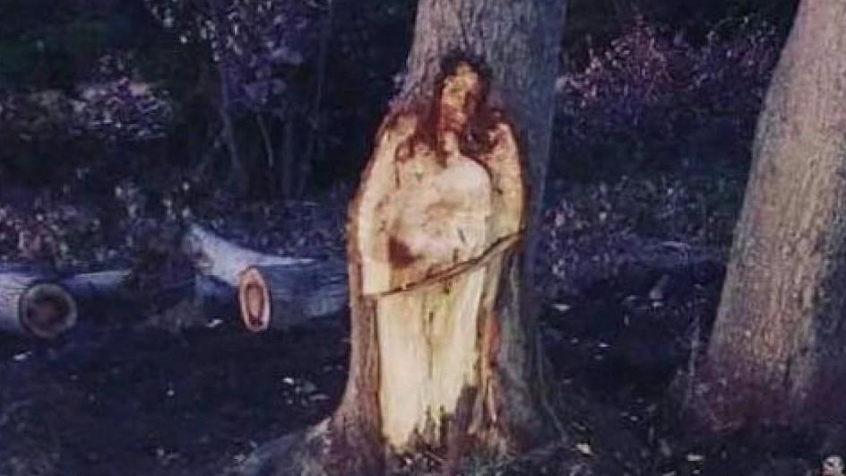 blog jesus tree