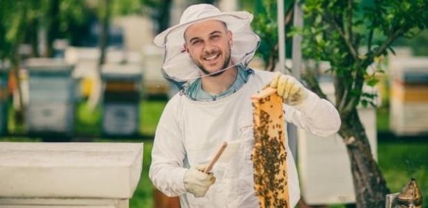 a apicultura urbana pode se tornar um hobby fascinante