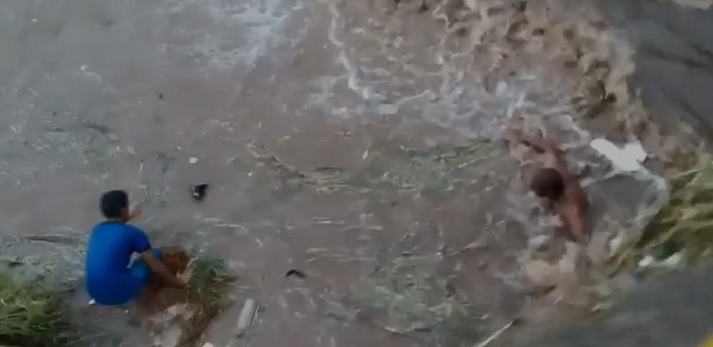 resgate cachorra