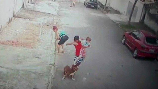 Patrick salvou uma criança de cinco anos do ataque de uma cachorro Foto: Reprodução