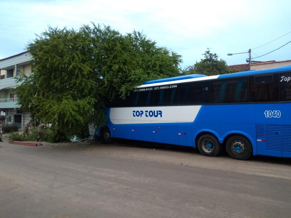 Ônibus atingiu motorista e só parou depois de bater em uma árvore, em Vila Velha — Foto: Reprodução