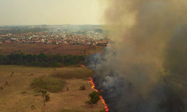 mato gosso 13 09 2020 incendio no pantanal1209201060